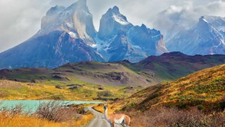Parc Torres del Paine, Patagonie, Chili