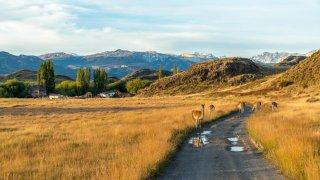 La route australe au Chili