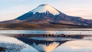 Le Parc National de Lauca au Chili