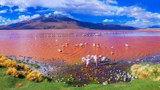 Les mines de cuivre au Chili