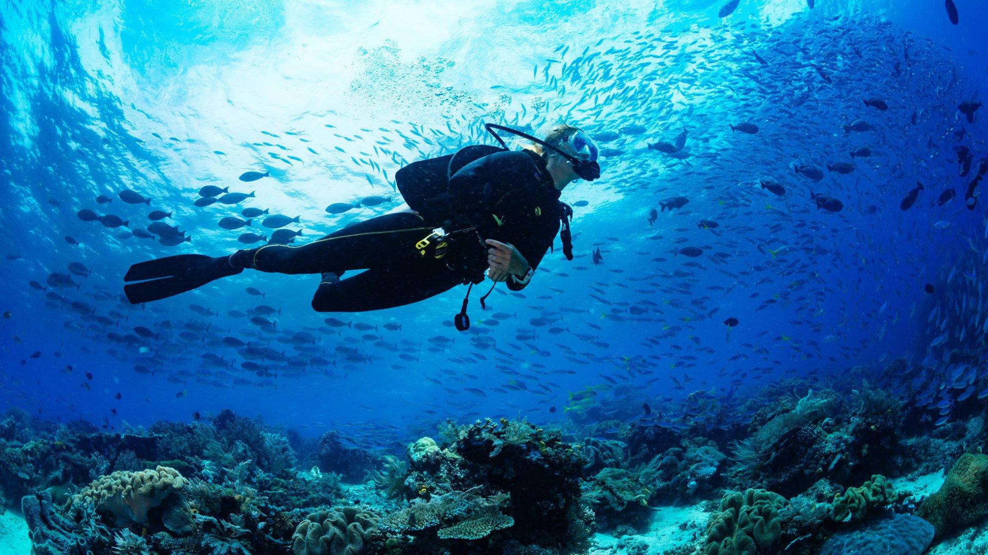 site de rencontre plongée sous marine