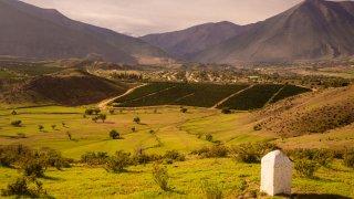 Cactus, montagnes et vallées près de la ville de Vicuña Vicuna. Vallée d'Elqui au Chili