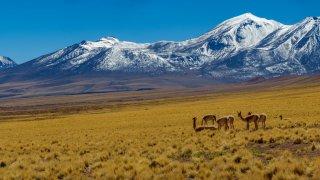 Altitude au Chili : Informations pour votre voyage